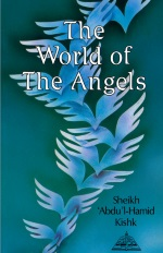 The World of The Angels Front Cover